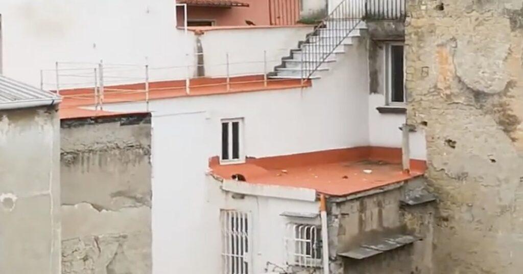gatto bloccato sul tetto salvato a Napoli