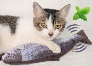 pesce interattivo per il gatto