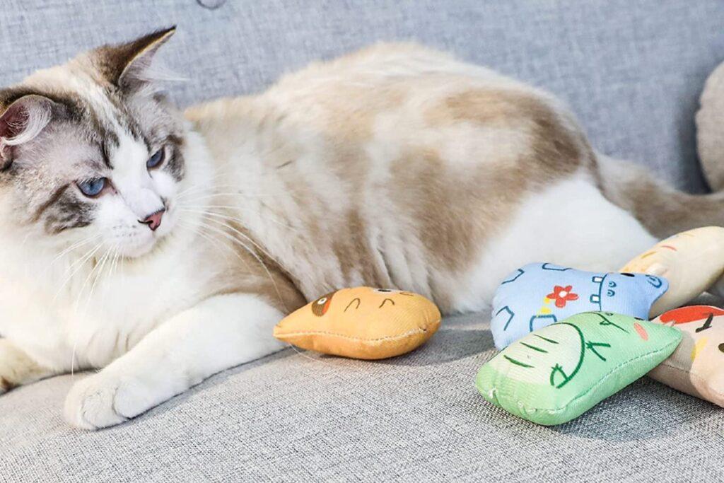 gatto con topolini tra le zampe