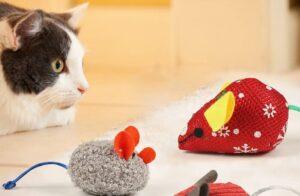 gattino gioca con topolini di pezza