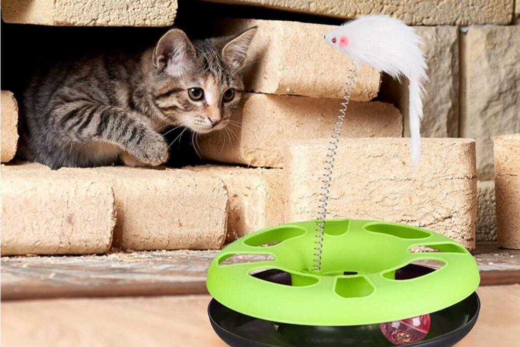gioco interattivo per gatto