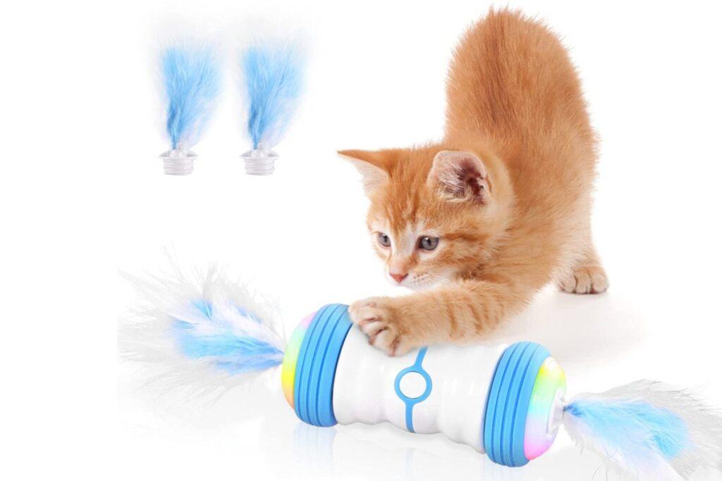 gioco interattivo per gattini