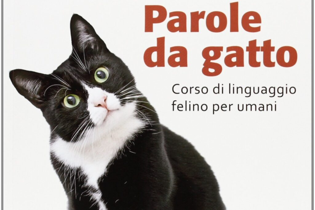 libro su comunicazione del gatto