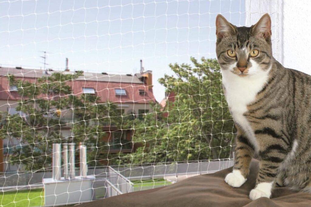 rete per gatti