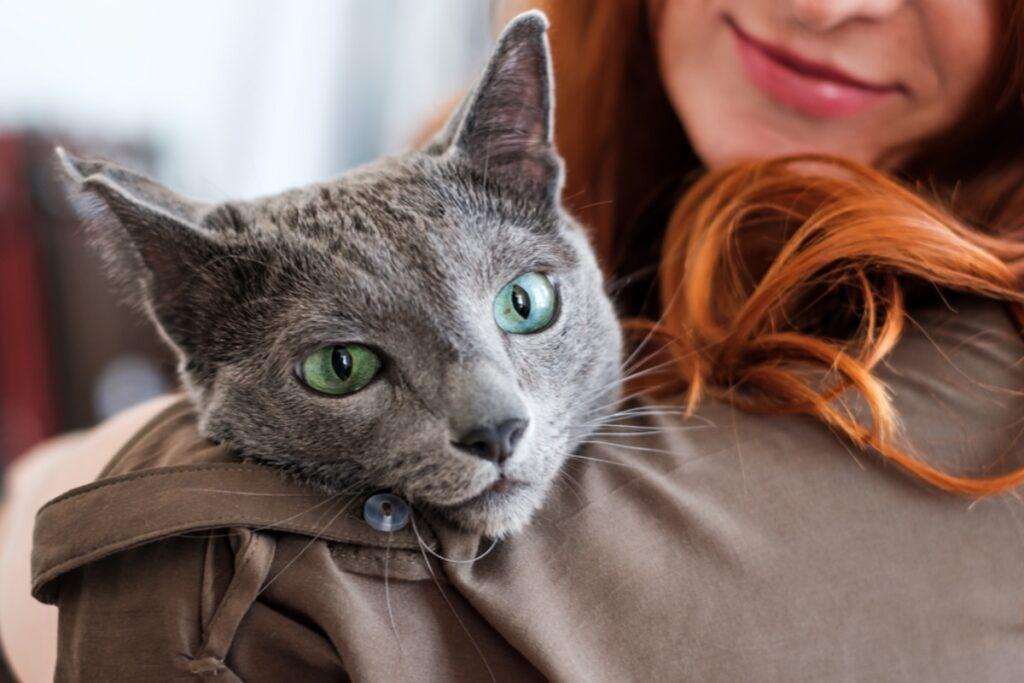 gatto sulla spalla di una ragazza