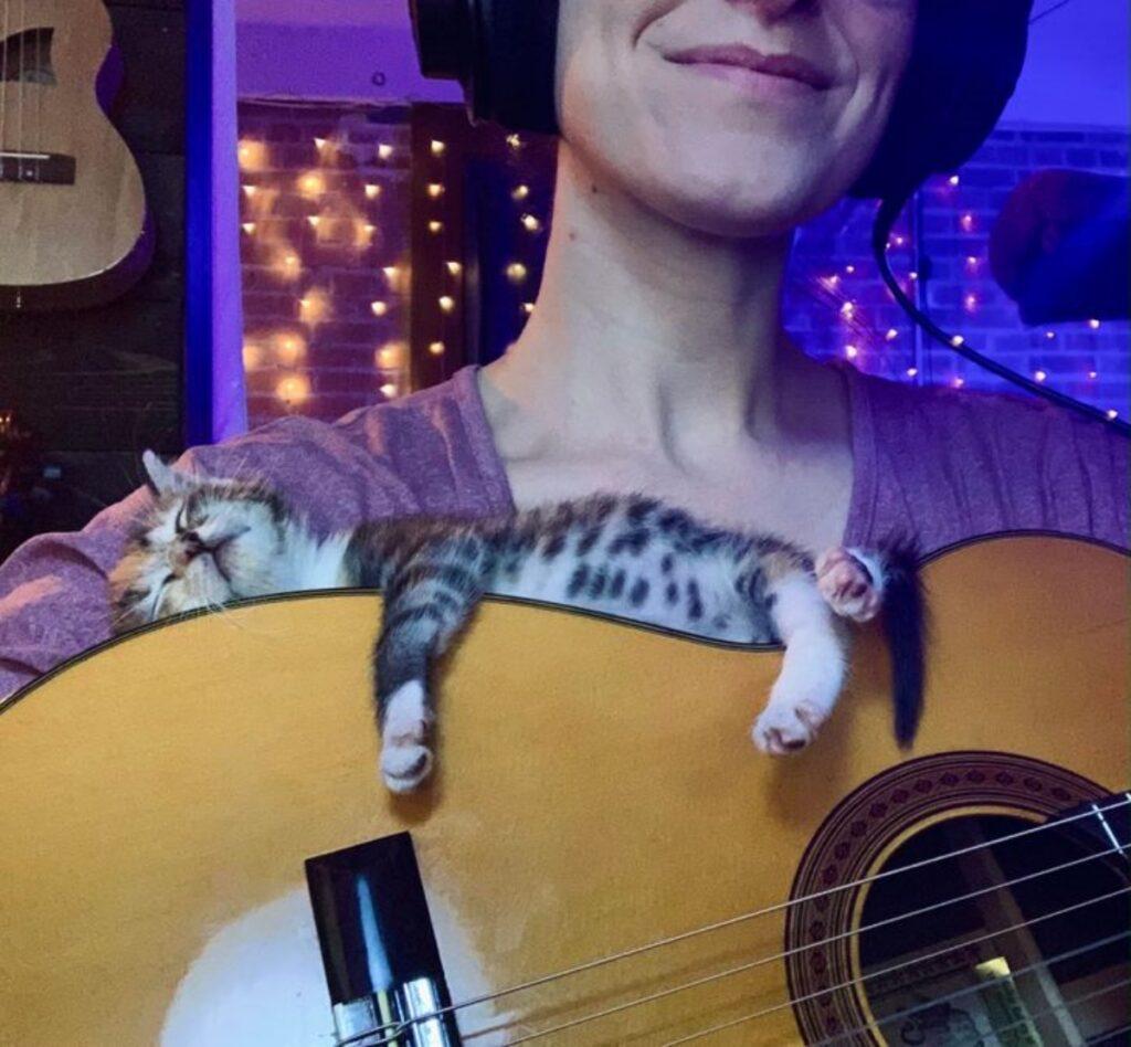 micio chitarra sonnellino
