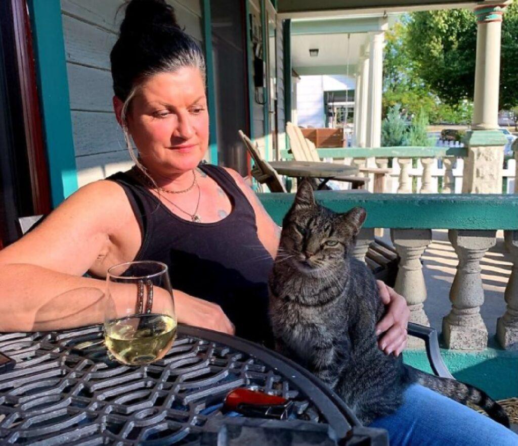 gatto soriano partecipa aperitivo