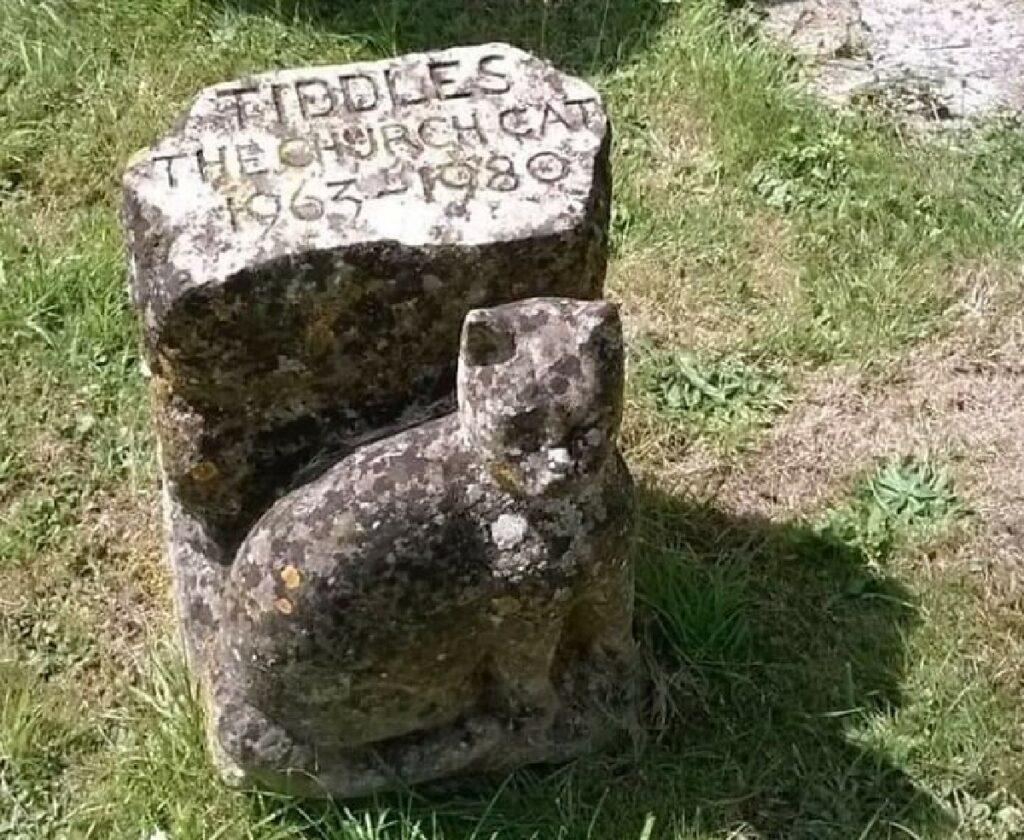 gatto pietra commemorativa