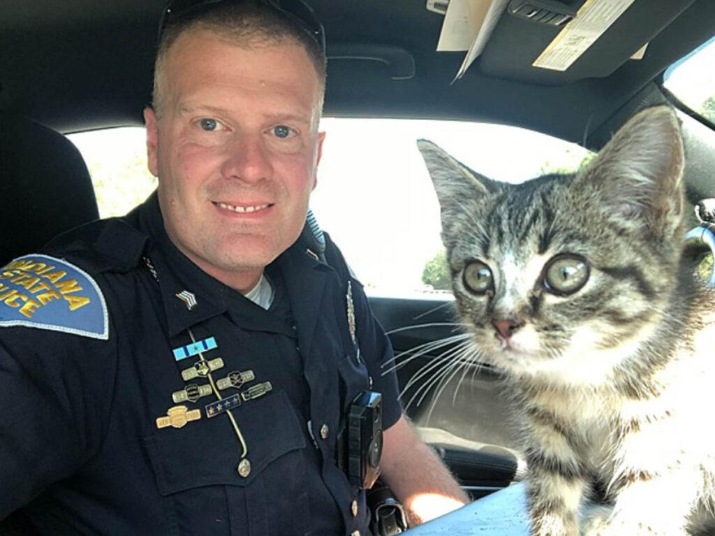 agente di polizia con gatto grigio
