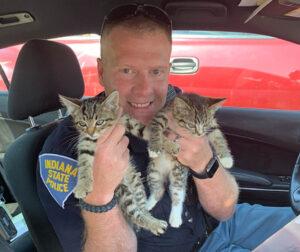 agente di polizia con due gattini