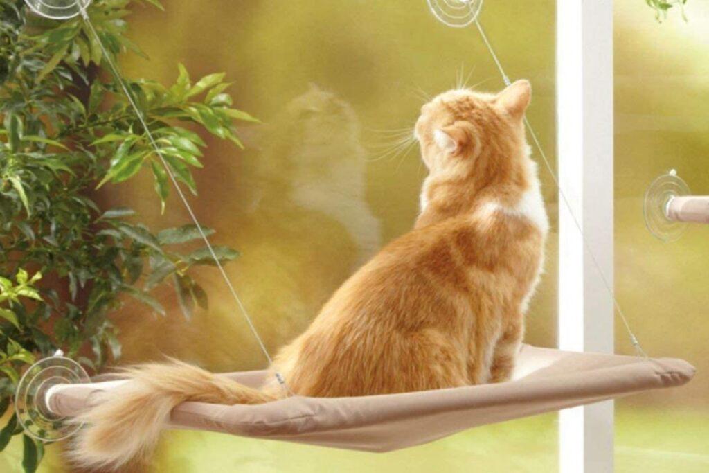 amaca da finestra per gatti