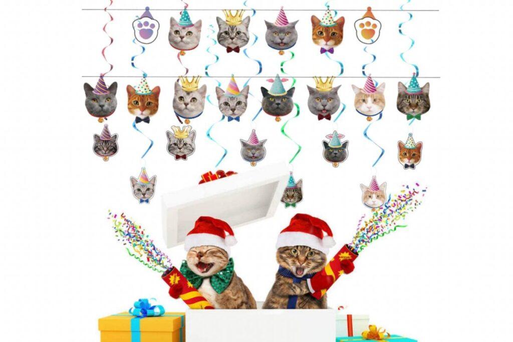 festa a tema gatto