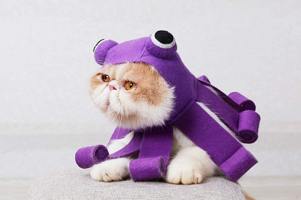 costume da polpo per gatti