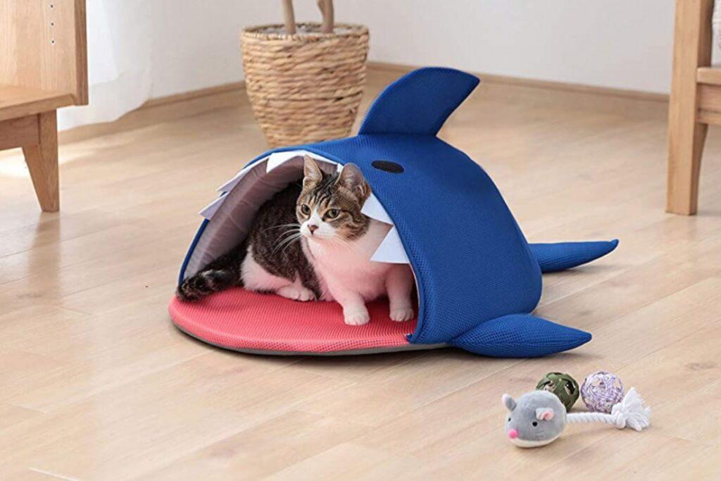 cuccia a forma di squalo