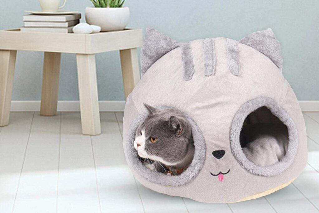 cucce buffe per gatti