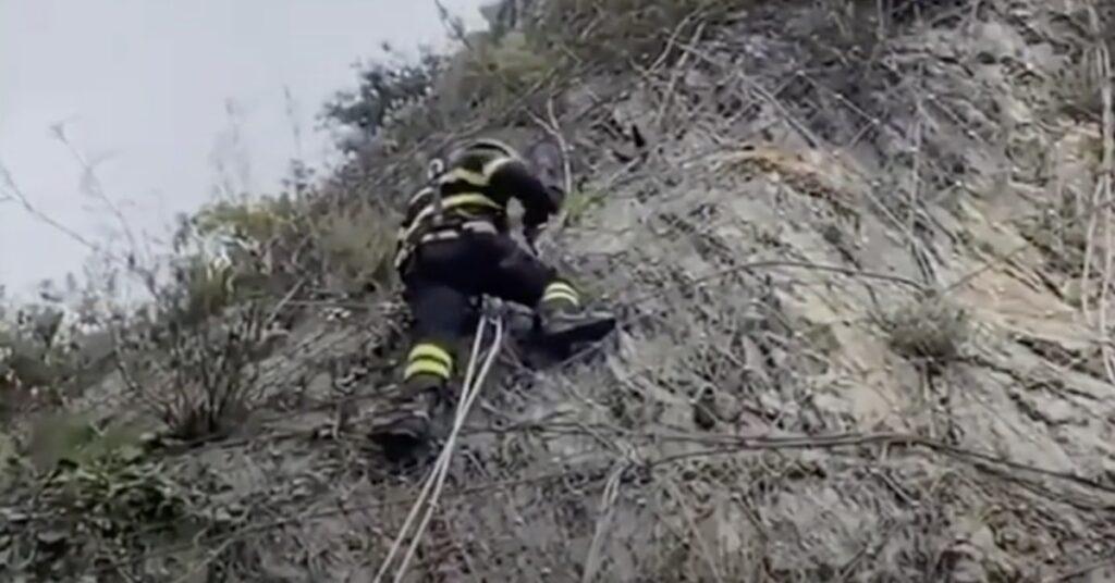 pompiere salva gatto incastrato su costone montagna