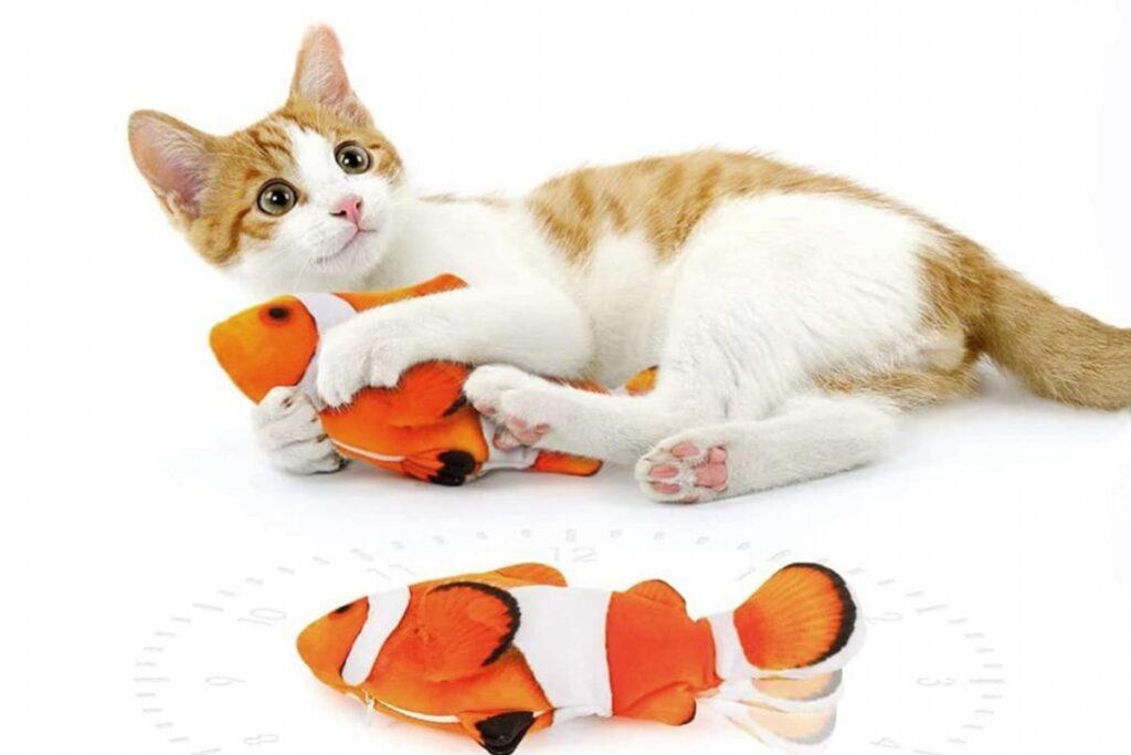 gattino che gioca col pesce