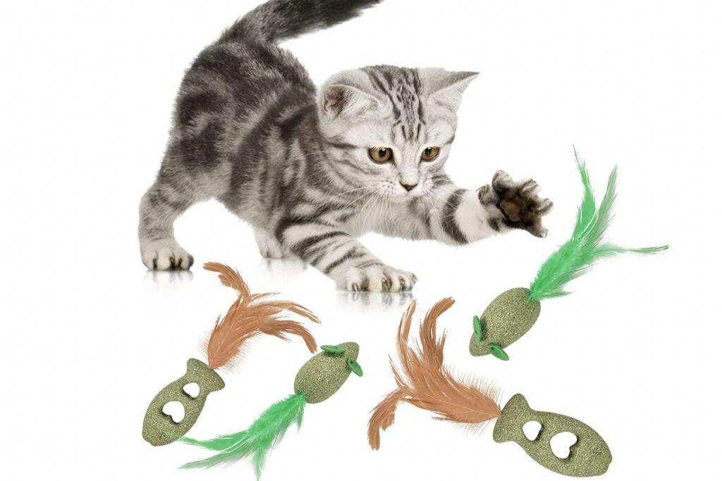 giocattoli all'erba gatta