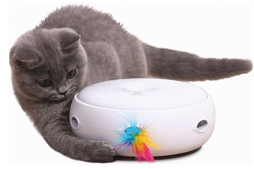 gioco interattivo per gatti