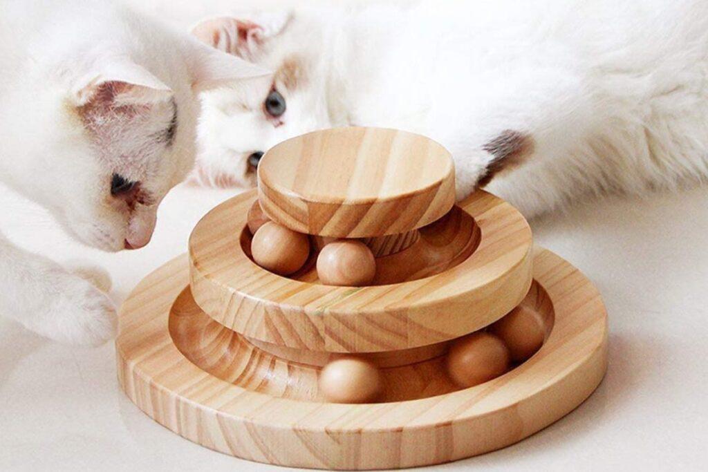 piramide giocattolo per gatti