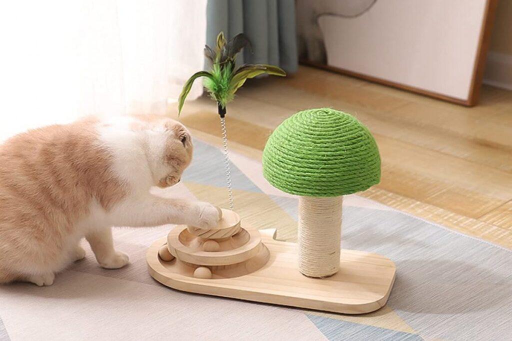 gioco con funghetto