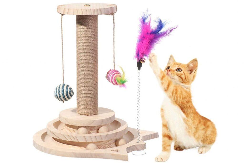 gioco per gattini