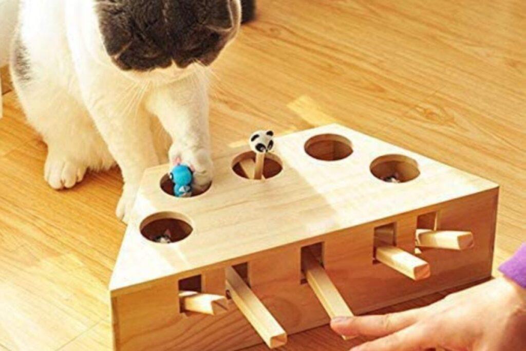 giocattolo interattivo di legno