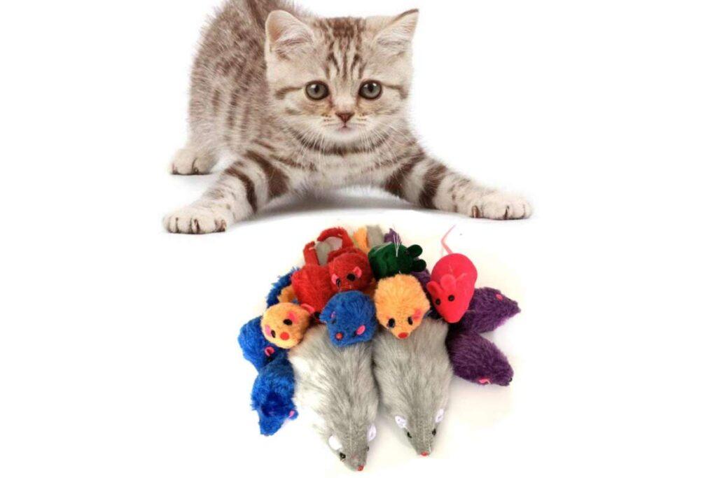 topolini per gatto