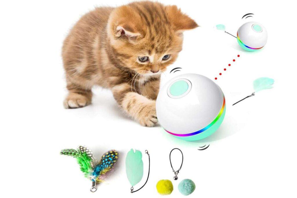 pallina interattiva per gatti