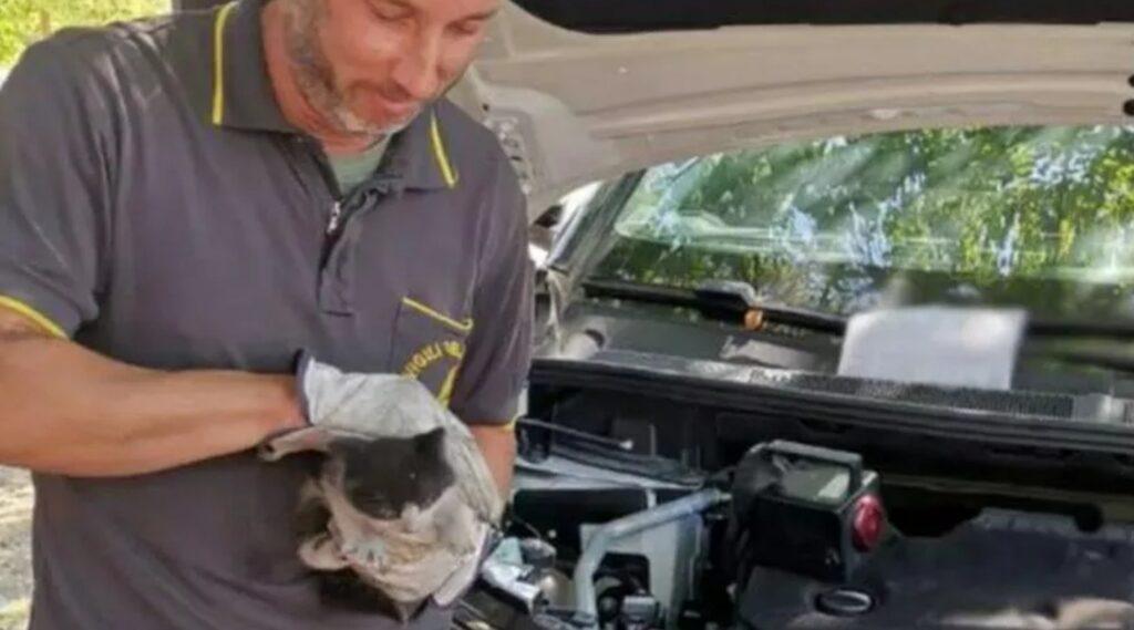 pompiere con gattino