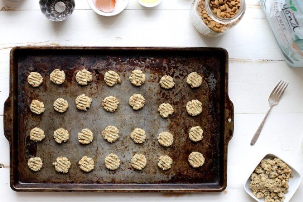 biscottini al salmone e farina di avena