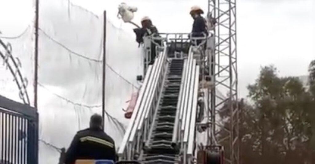 pompieri salvano gattino su un palo della luce