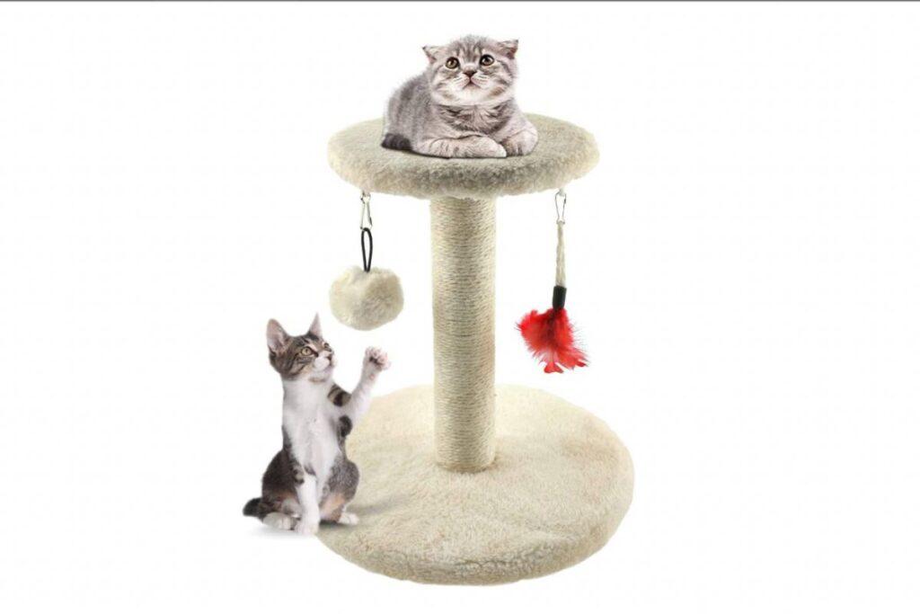 gattini sul tiragraffi