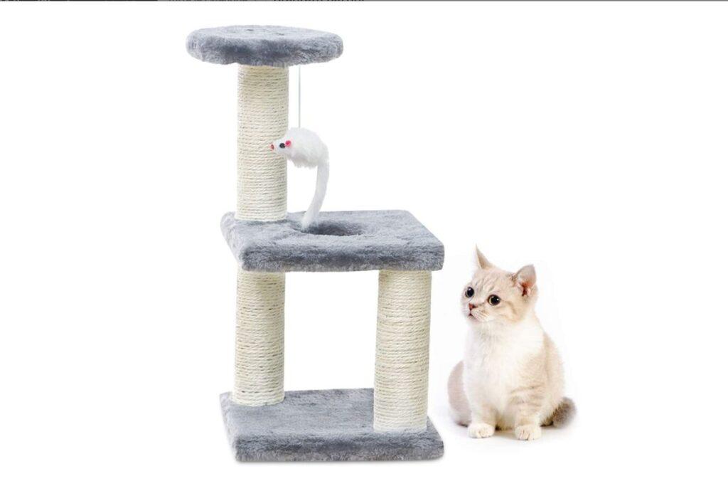 tiragraffi per gattini piccoli