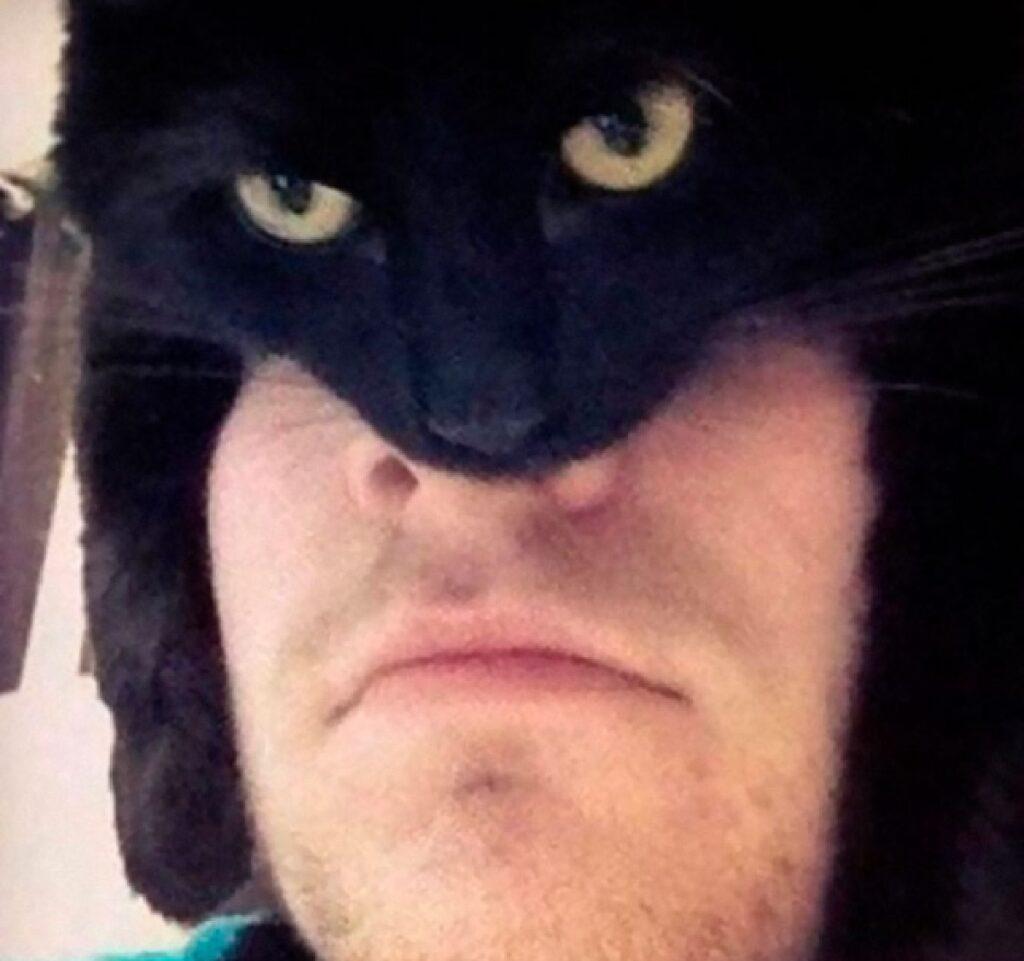 gatto nero batman