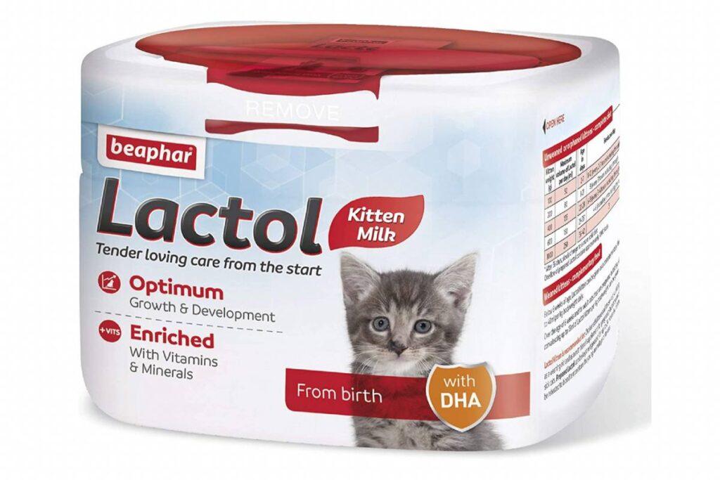 latte in polvere per gattini