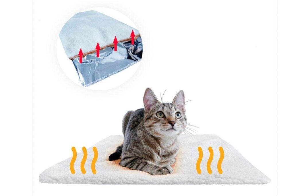 tappetino caldo per gatto