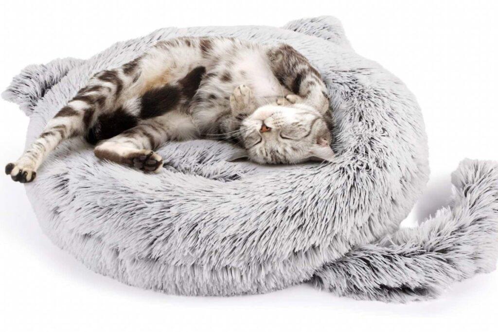 cuccia a forma di gatto