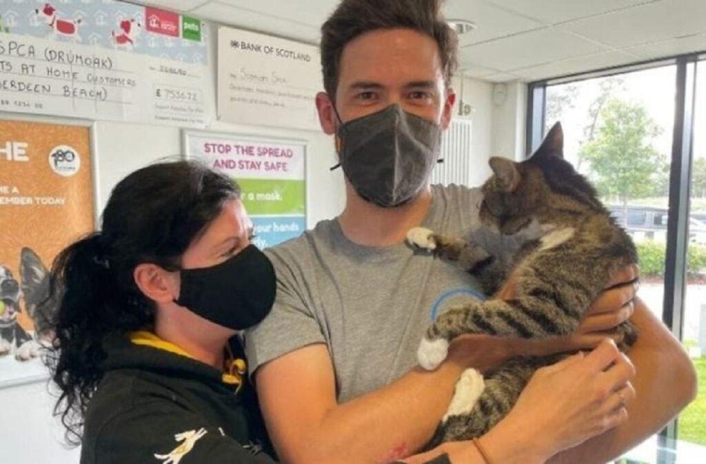 gattino scomparso ritrovato dopo 10 anni