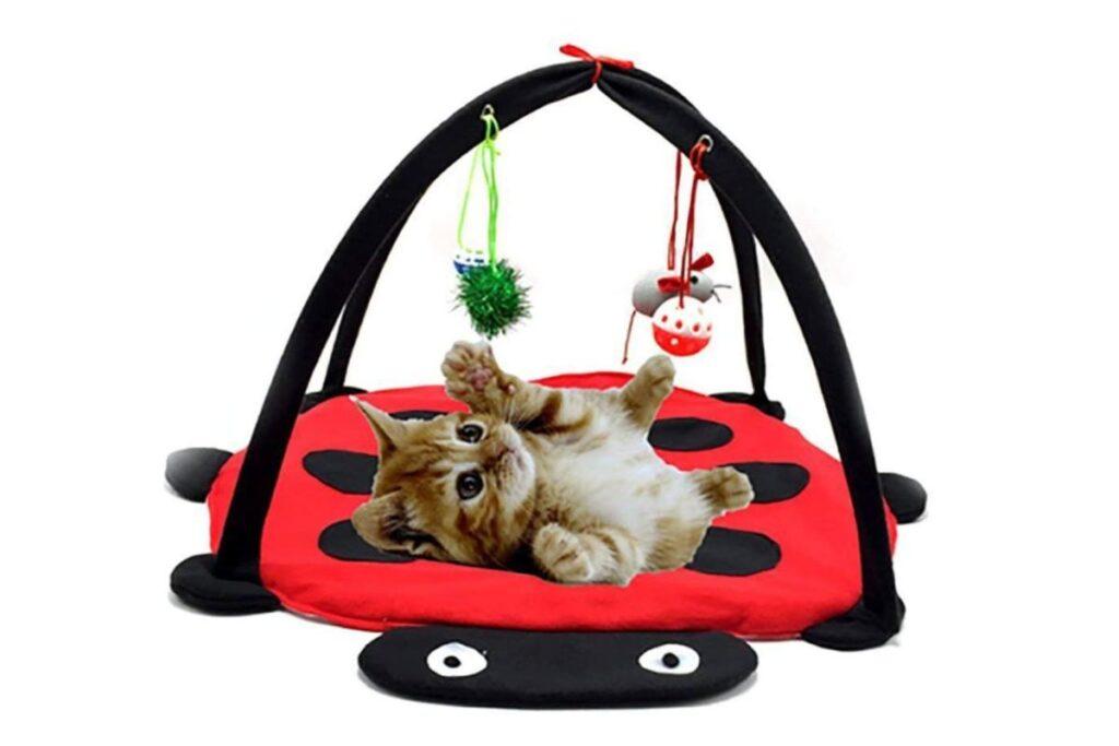 tappeto giocattolo per gattini