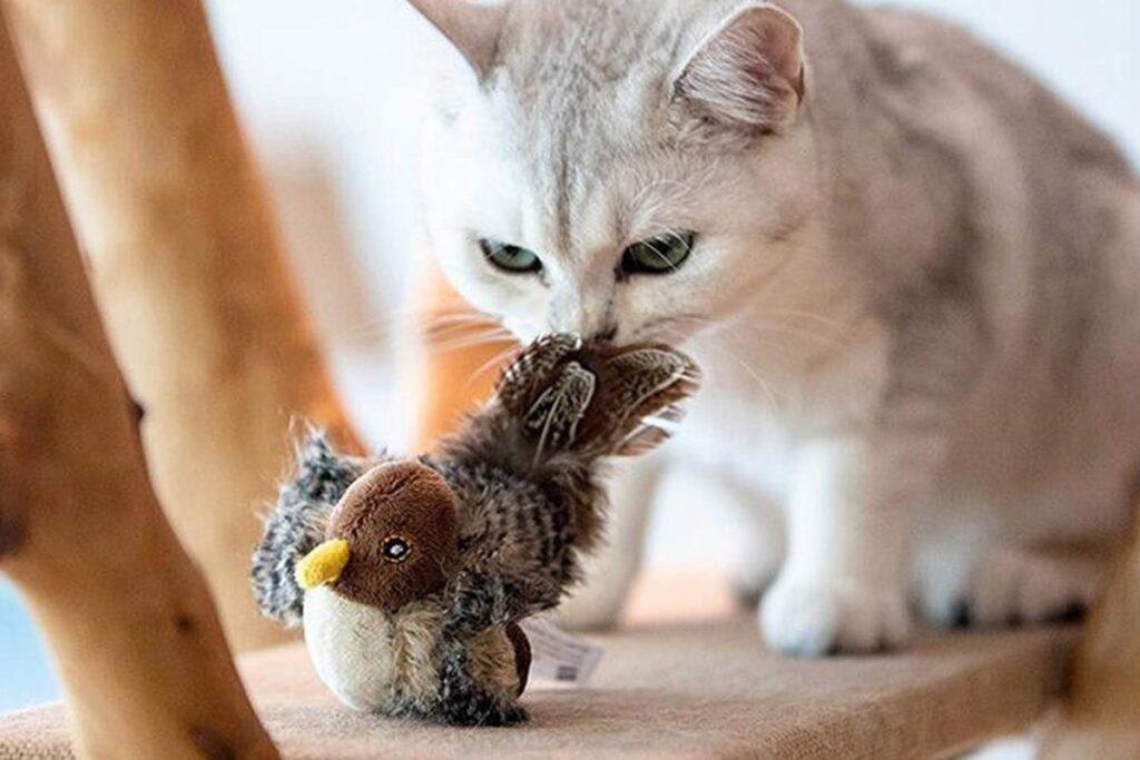 giochi sensoriali per gatti