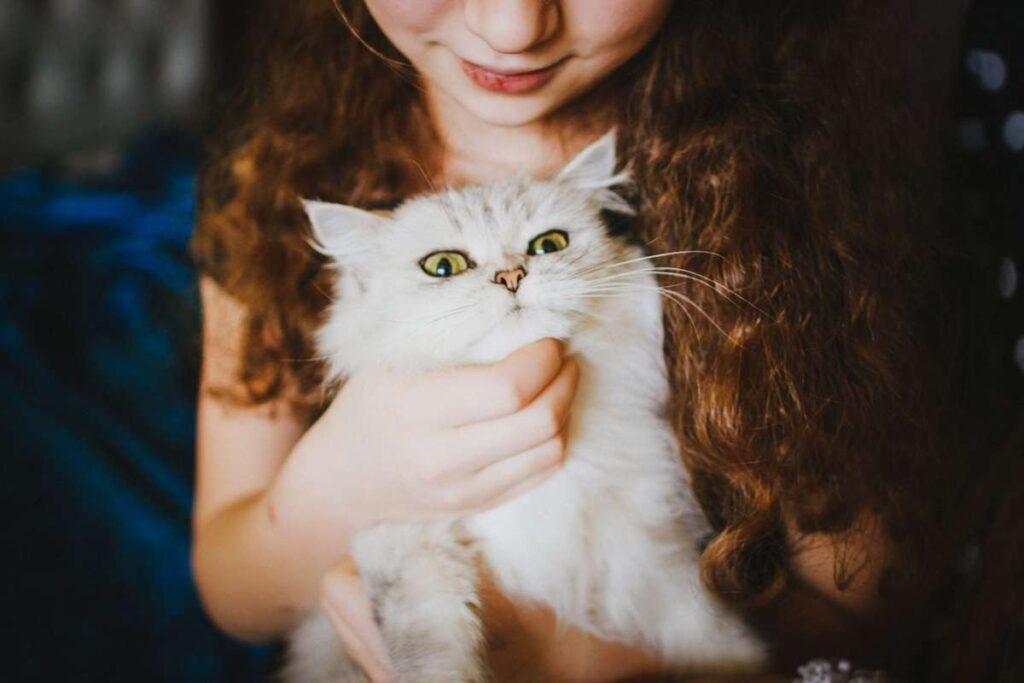 ragazza abbraccia il gatto