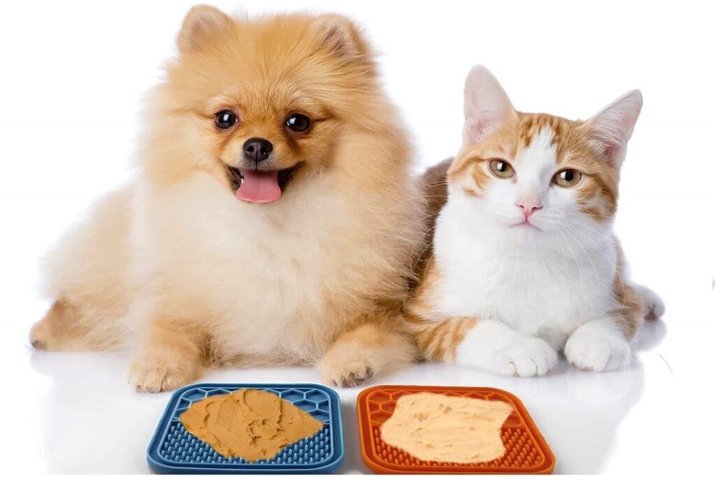 tappetini alimentari per gatti