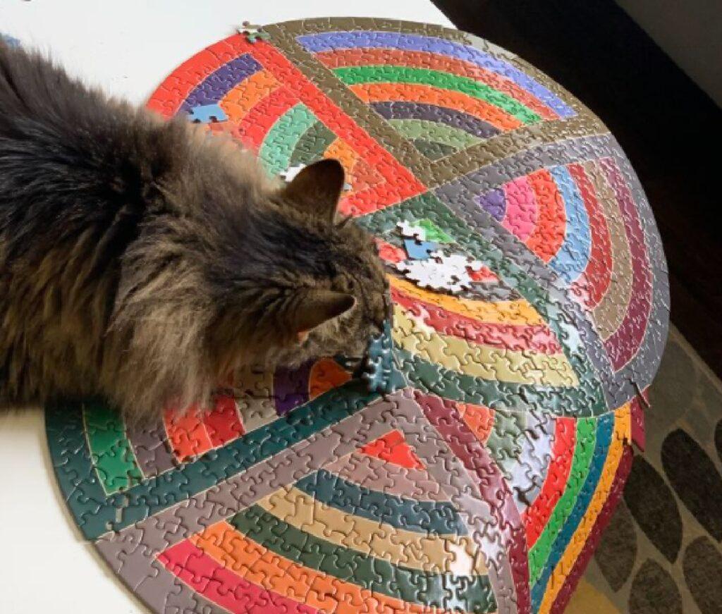 gatto sta per buttare giù puzzle