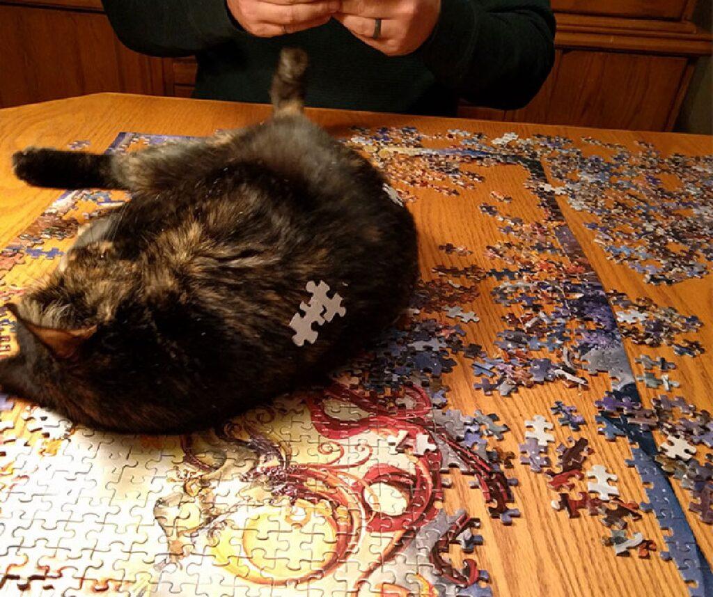 gatto pezzi di puzzle sulla schiena