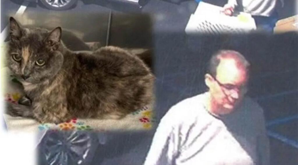 uomo abbandona gatto e viene ripreso dalle telecamere