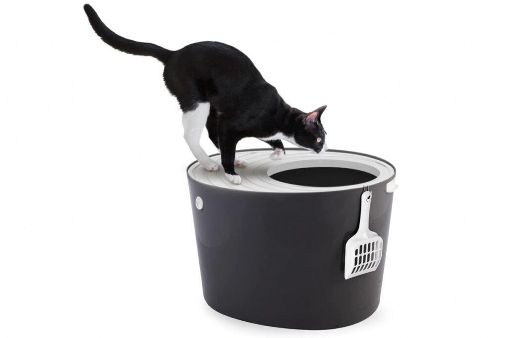 toilette per gatti con entrata superiore