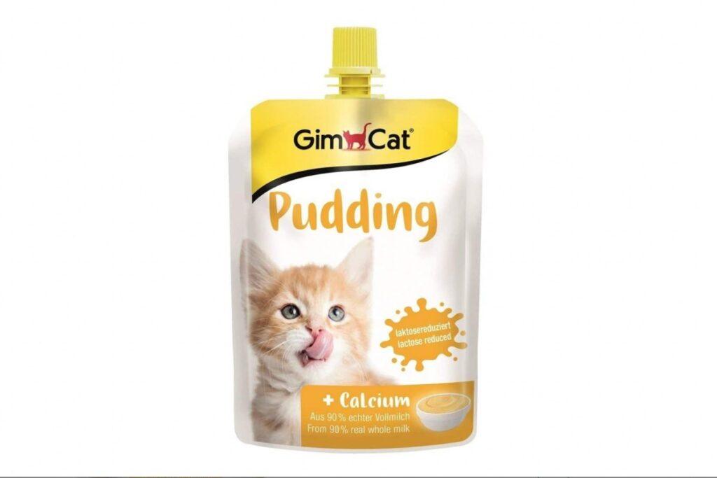 budino per gattini