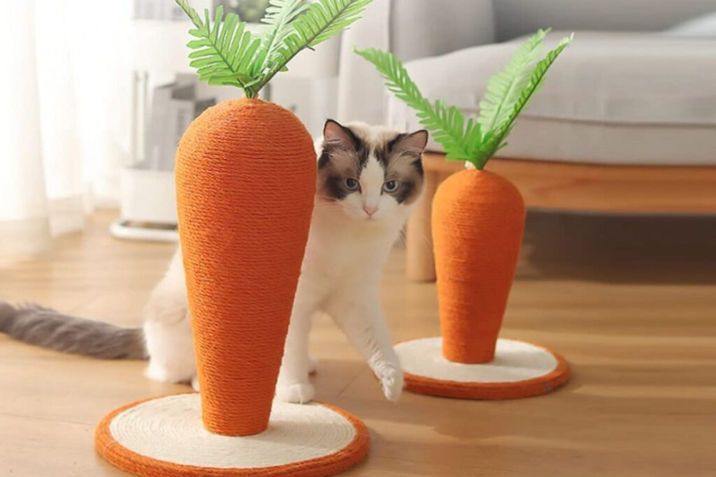 tiragraffi carote